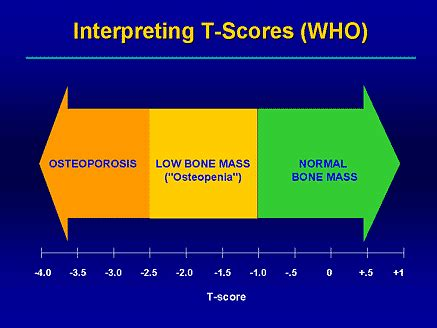 Effective Therapeutic Options for Hip Fractures in
