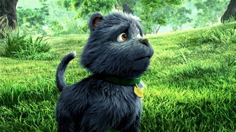 The Wizard of Oz's Toto to get his own animated Oz feature